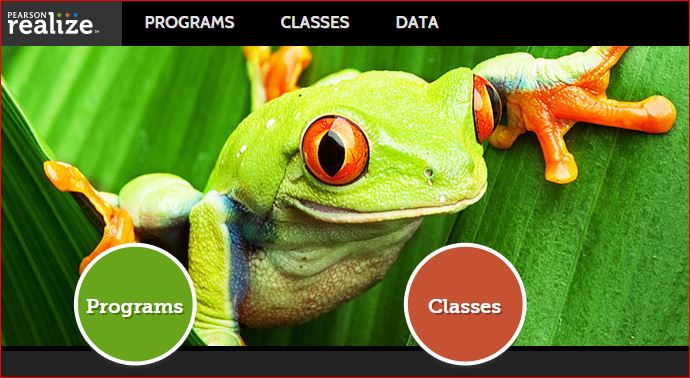 Picture of Green Frog Displaying Programs, Classes, and Data